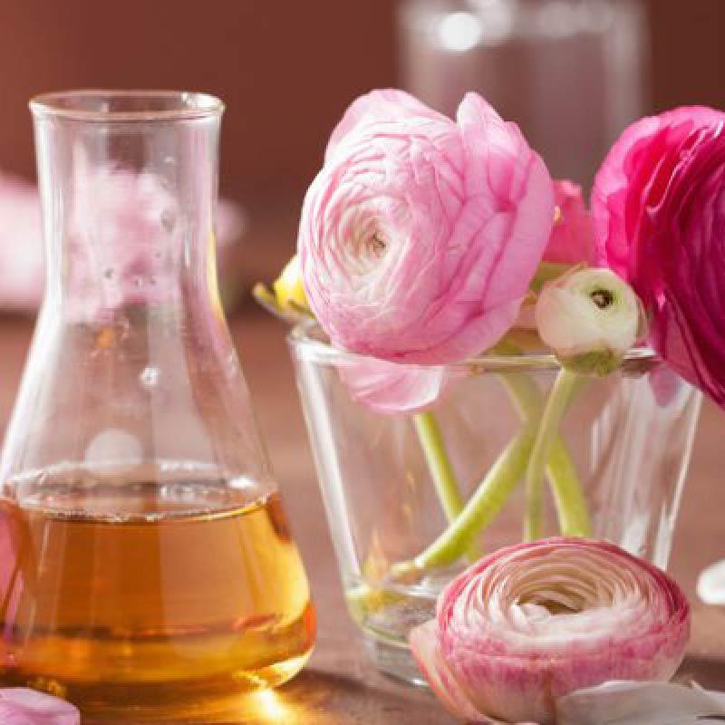 palo-rosa-beneficios-y-propiedades