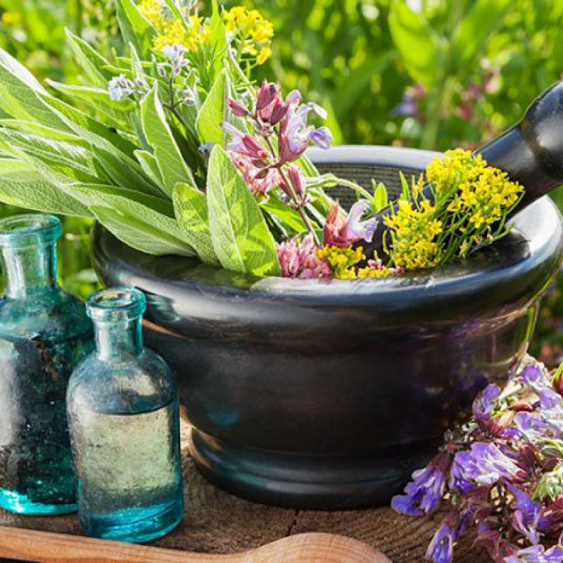 que-es-la-aromaterapia